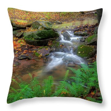 Throw Pillow featuring the photograph Autumn Falling by Bill Wakeley