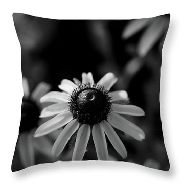 Throw Pillow featuring the photograph Black-eyed Susan  by Jeff Phillippi