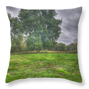 Blacklick Circle Earthwork Throw Pillow