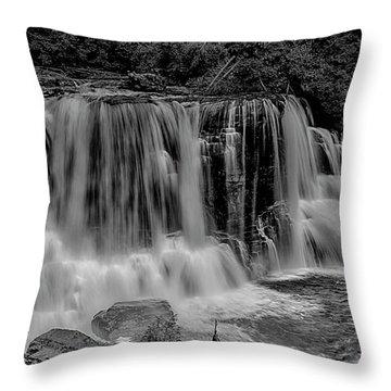 Blackwater Falls Mono 1309 Throw Pillow