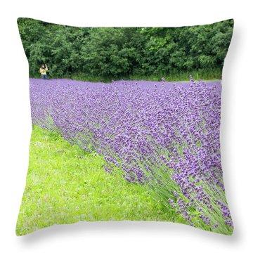 Blue Lavender Throw Pillow
