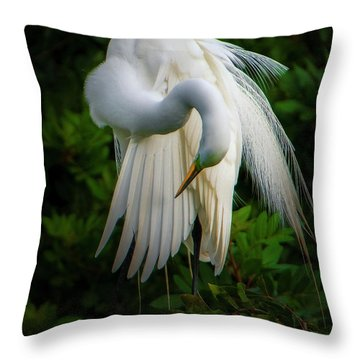 Breeding Plumage And Color Throw Pillow