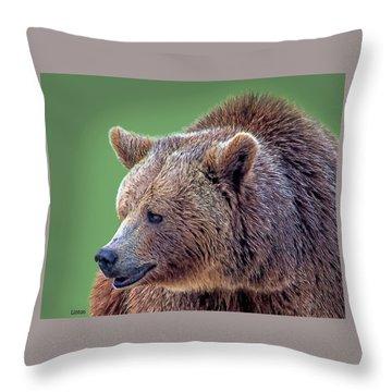 Brown Bear 5 Throw Pillow