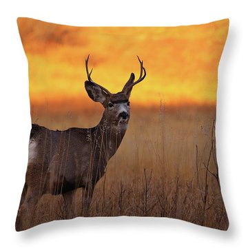 Poser Throw Pillow