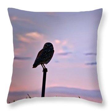 Burrowing Owl On A Stick Throw Pillow