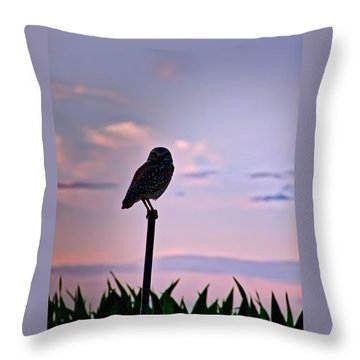 Burrowing Owl On A Stick Throw Pillow