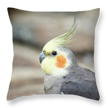 Throw Pillow featuring the photograph Close Up Of A Cockatiel by Rob D Imagery