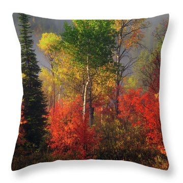 Color And Light Throw Pillow