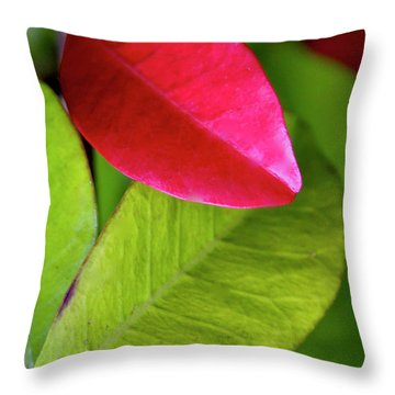 Colours. Red Throw Pillow