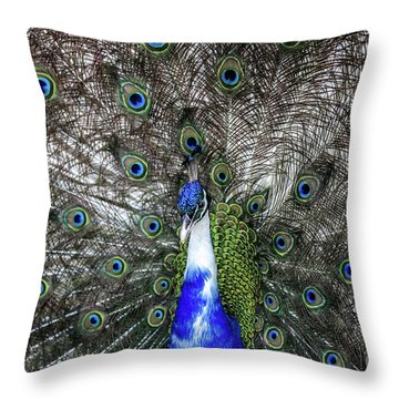 Throw Pillow featuring the photograph Dancing Peacock by Awais Yaqub