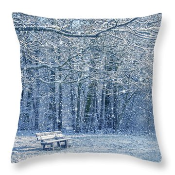 Snowy Landscape With A Bench Throw Pillow