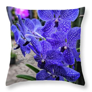 Deep Purple Orchid Throw Pillow