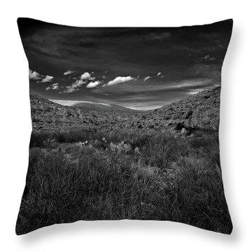 Desert And Sky Throw Pillow