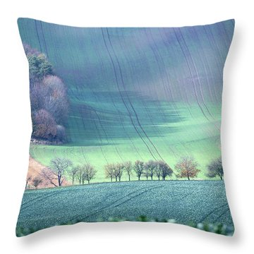 Autumn In South Moravia 1 Throw Pillow