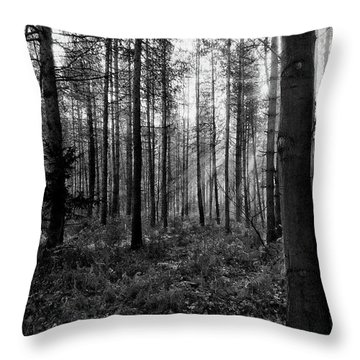 Kings Lynn Throw Pillows
