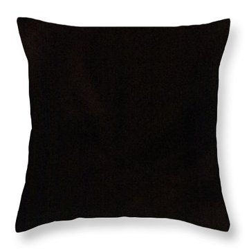 Throw Pillow featuring the photograph Flamenco 42 by Catherine Sobredo