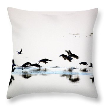 Throw Pillow featuring the photograph Flight by Buddy Scott