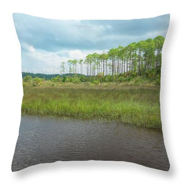 Throw Pillow featuring the photograph Florida Marshland by John M Bailey