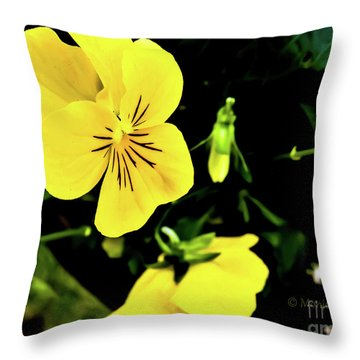 Flowers Hanging No. Hgf17 Throw Pillow