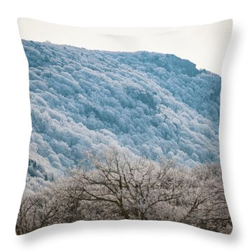 Frost On The Mountain Throw Pillow