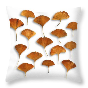 Throw Pillow featuring the photograph Gingkos Fall by Mark Shoolery