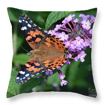 Hairy - Painted Lady Throw Pillow