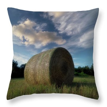 Hay Bale 2 Throw Pillow