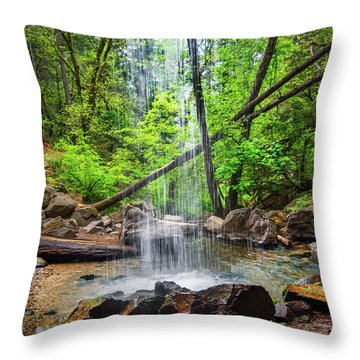 Hedge Creek Falls Throw Pillow