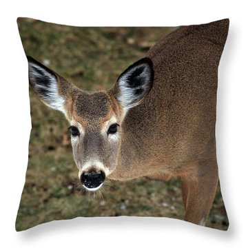 Hello There Throw Pillow