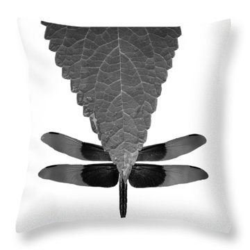 Hiding Dragons Throw Pillow