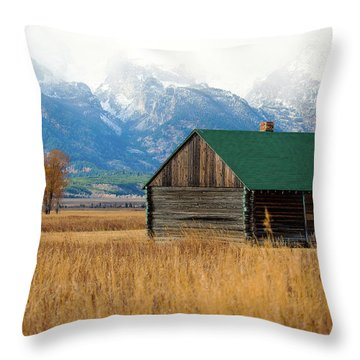Throw Pillow featuring the photograph Home On The Range by Pete Federico