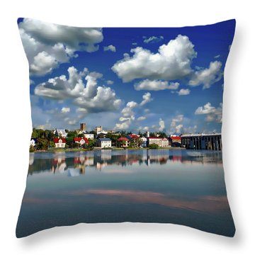 Throw Pillow featuring the photograph Icelandic Coastal View by Anthony Dezenzio