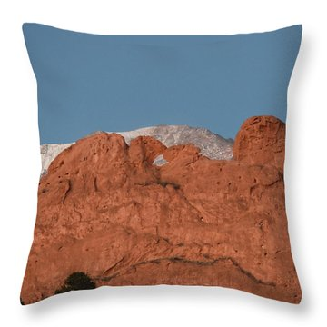 Throw Pillow featuring the photograph Kissing Camels by Margarethe Binkley