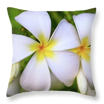 Laukahi Plumerias Throw Pillow