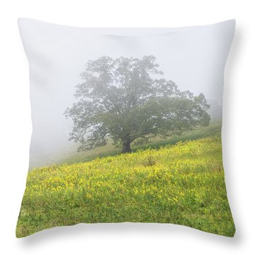 Lone Tree Hill - Blue Ridge Parkway Throw Pillow