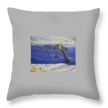 Lonely Relic Throw Pillow