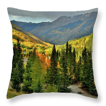 Looking North From Red Mountain Pass Throw Pillow