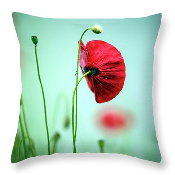 Morning Poppy Flower Throw Pillow