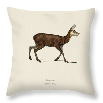 Moschus Illustrated By Charles Dessalines D  Orbigny  1806 1876  Throw Pillow