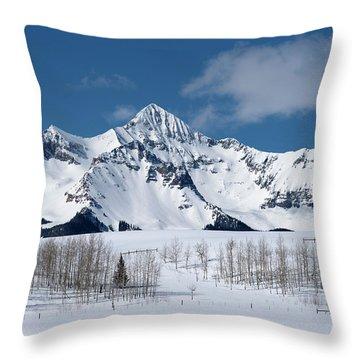Mt Wilson Throw Pillow