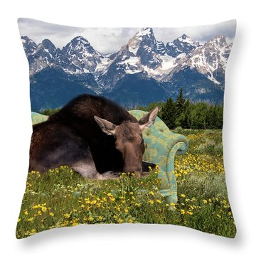 Nap Time In The Tetons Throw Pillow