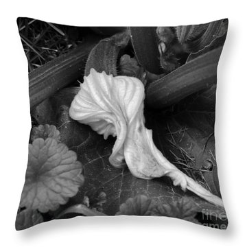 Throw Pillow featuring the photograph New Life by Rosanne Licciardi