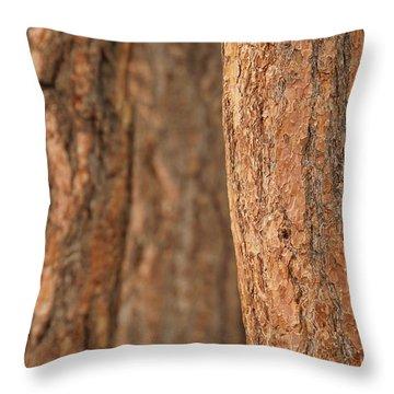 Ponderosa Pine Bark Detail Throw Pillow