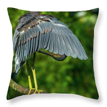Preening Reddish Heron Throw Pillow