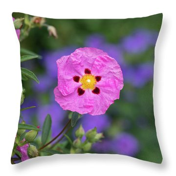 Throw Pillow featuring the photograph Purple Flowered Rock Rose by Tim Gainey