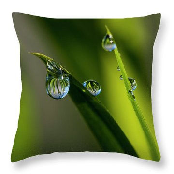 Rain Drops On Grass Throw Pillow