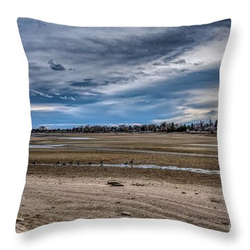 Throw Pillow featuring the photograph Right Of Way by Jon Burch Photography