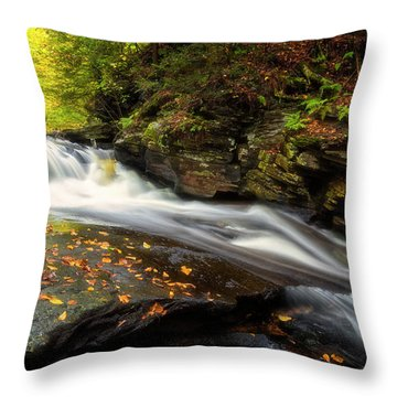 Throw Pillow featuring the photograph Rushed by Russell Pugh