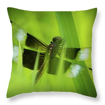Throw Pillow featuring the photograph Secret Dragon by Jeff Phillippi