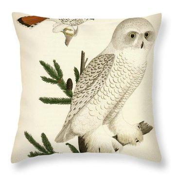 1. Snow Owl. 2. Male Sparrow-hawk. Throw Pillow